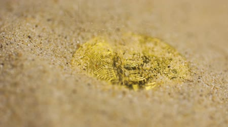 localização : slow motion macro sand whelms golden coin to the currency with decentralization located in network Stock Footage