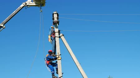 condutor : worker climbs up on electric post to save injured by electricity