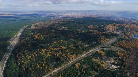 fantastický : panorama evergreen and deciduous forests crossed by roads