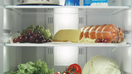 zamrażarka : open domestic fridge with different products on shelves