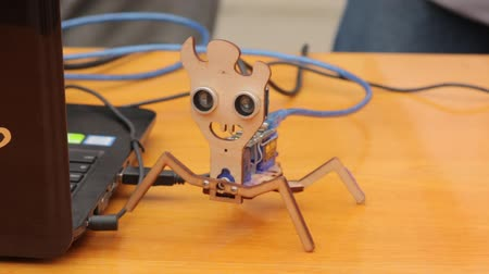 близость : The Toy Electronic Robot