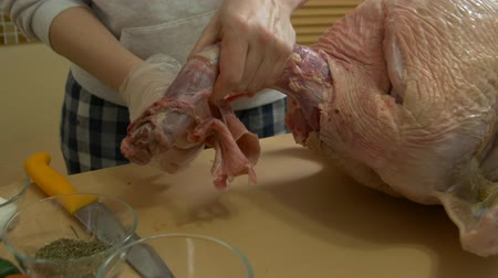 curcuma : Cuts The Turkey Skin Stock Footage