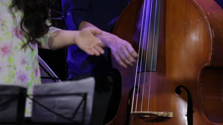 sicim : Play Double Bass