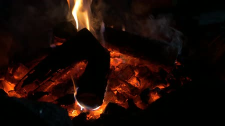 ontvlambaar : Bonfire Coals Flames Stockvideo