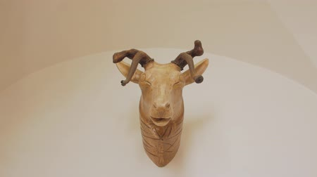 prêmio : Deer Head With Broken Horns