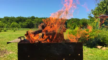 outing : Beautiful red fire from slice wood, dark gray black coals inside metal brazier.