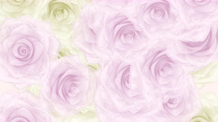 Beautiful seamless loop 3D animation like intro for wedding, valentines day or memories video. On this 3d footage big pink and white rose buds falling down, very soft background