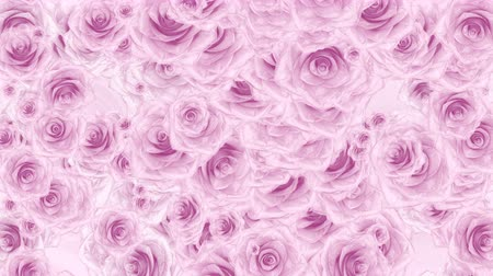 Роуз : Beautiful very soft seamless loop 3D animation like intro for wedding, valentines day or memories video. On this 3d footage many pink rose buds falling down on abstract background.