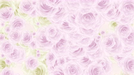 fiancee : Beautiful very soft seamless loop 3D animation like intro for wedding, valentines day or memories video. On this footage many pink and white rose buds falling down, seamless loop background