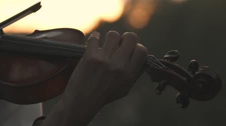 rabeca : Man playing the violin outdoors in summer in the woods outdoors