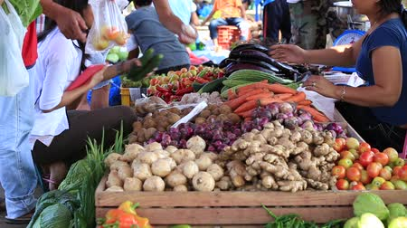 rabanete : DUMAGUETE, PHILIPPINES - FEBRUARY 16, 2014 : Unidentified people buying and selling vegetables and fruit at market.