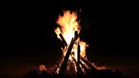 обряд : Bonfire burning trees at night. Bonfire burning brightly, heat, light,camping, big bonfire
