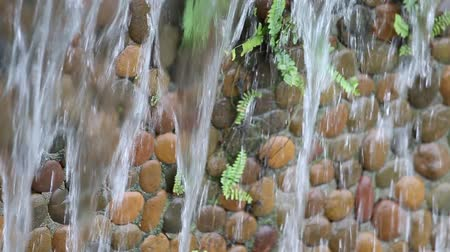 sel : Water flows along a stone wall Stok Video