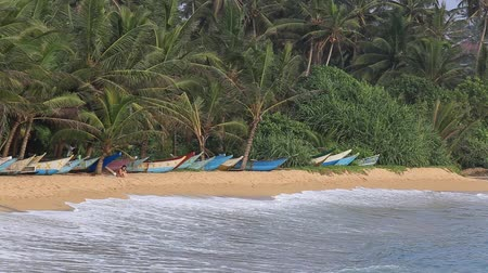 trópicos : MIRISSA, SRI LANKA - NOVEMBER 12, 2014: Unidentified tourist on the tropical beach with exotic palm trees and wooden boats on the sand