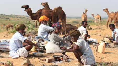 tribo : PUSHKAR, INDIA - OCTOBER 28, 2014: Unidentified Indian men and herd camels attended the annual Pushkar Camel Mela. This fair is the largest camel trading fair in the world. Vídeos