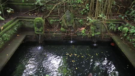 ganesha : Water spring hindu temple at sacred monkey forest. Ubud Bali Indonesia Stock Footage