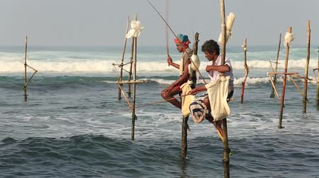 климат : KOGGALA, SRI LANKA - NOVEMBER 9, 2014: Unidentified local fishermen are fishing in unique style. This type of fishing is traditional for South Sri Lanka in Indian ocean.