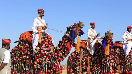 kultúra : JAISALMER, INDIA - FEBRUARY 09, 2017: Camels and indian men wearing traditional Rajasthani dress. Desert contest as part of the Desert Festival in Jaisalmer, Rajasthan, India Stock mozgókép