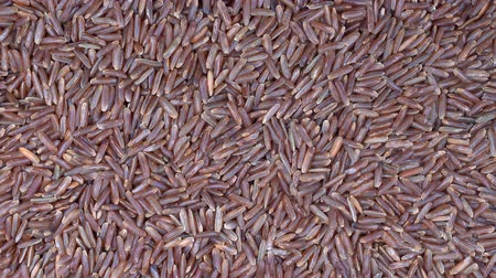 prim : Pile of unpolished brown rice background, close up. Food background. Gastronomy concept, organic food. Macro organic rice Stok Video