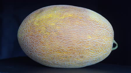 мускусная дыня : Yellow melon on a black background, close up. Rotates yellow melon, macro Стоковые видеозаписи