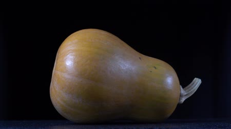 tykev : Yellow pumpkin on a black background, close up. Rotates yellow pumpkin, macro
