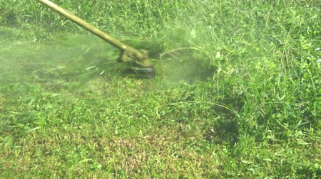 Professional gardener mowing lawn lawn mower. On a sunny day young, close up Wideo