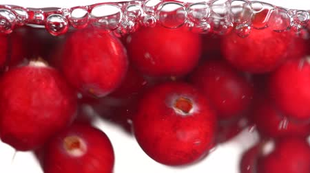 immersione : A beautiful ripe cranberry is immersed in a container of water with bubbles on isolated a background in slow motion, close up Filmati Stock
