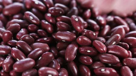 macrobiotic : red bean texture in the background. natural products background. Hand stirred the beans