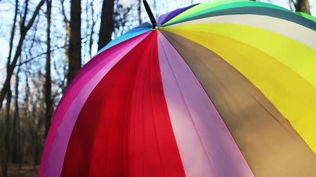 multicolored umbrella lies in autumn Park. Dolly video
