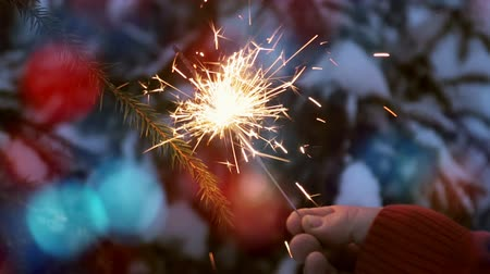 monte de neve : burning sparklers on the Christmas tree in the winter forest