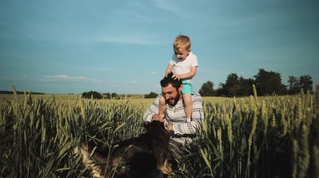 yakalandı : Father and son playing with a dog on the wheat field. Fathers Day Family concept