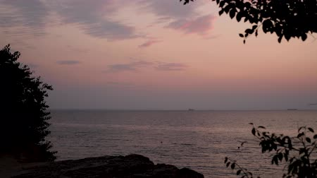 Beautiful pink sunset (sunrise) on the sea, complete calm, flying seagulls. Selective focus.
