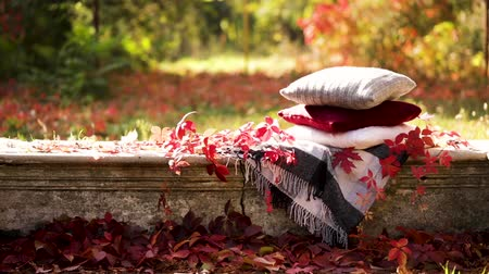 castiçal : Autumn garden. There is a blanket, a basket of apples and a burgundy hat with rubber boots. Selective focus.