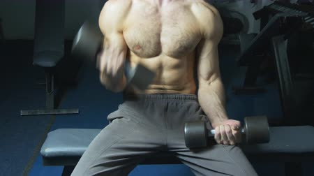levantamento de pesos : Muscular torso and hands with dumbbells of man exercising in gym