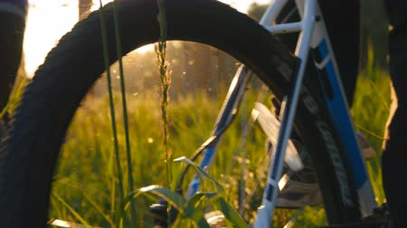cyclists : Two male bikers riding bikes through green grass on the meadow in sunset. Friends cycling through a field in summer. Low Angle View Stock Footage