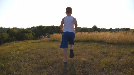 on the go : Following to young boy running on green grass at the field on sunny day. Child jogging at the lawn outdoor. Happy male kid having fun in nature on a summer meadow. Slow motion Rear back view