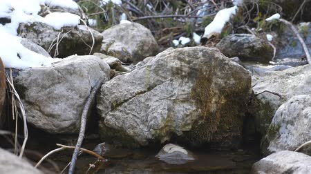 liken : Mountain stream in the winter forest. Rock in the midst of river rapids in early spring. Beautiful nature background of melt water. Calm or tranquil concept. Slow motion