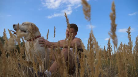 fetch : Young man sitting on green grass at meadow and stroking his dog. Male owner spending time together with his labrador or golden retriever at nature. Close up Slow motion