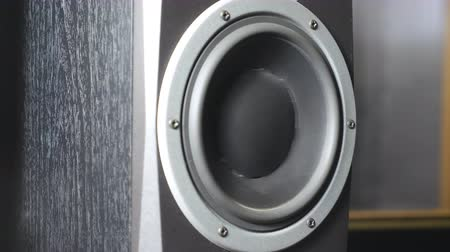 fidelity : Close up of moving sub-woofer on recording studio. Black speaker pulsating and vibrating from listen of loud music on low frequency. Working of modern high fidelity loudspeaker membrane. Slow motion