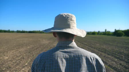 ground : Follow to unrecognizable young male farmer in hat and shirt walking on his field at sunny summer day. Blue sky at background. Concept of agricultural business. Rear back view Close up Slow motion Stock Footage