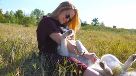Dolly shot of girl in sunglasses sitting on grass at meadow and hugging her husky dog. Beautiful woman with blonde hair caress and kissing her pet at field. Love and friendship with domestic animal