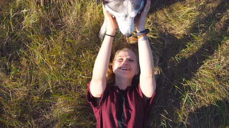 Top view of young girl with blonde hair lying on grass at field and stroking her husky dog. Beautiful woman spending time together with her pet at nature. Love and friendship with domestic animal Stockvideo