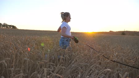 Profile of young girl holding golden wheat stalks in hand and jogging with her siberian husky on leash across meadow. Caucasian woman running with her dog at cereal field on sunset. Close up Side view Stock mozgókép
