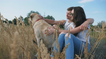 hound : Young couple sitting on grass at meadow and stroking his labrador. Family spends time together with his pet in nature. Couple enjoying rest with their domestic animal. Side view Slow motion Close up Stock Footage