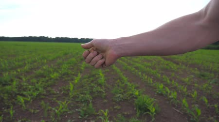 Close up of male farmers hand holds a handful of dry ground and checks soil fertility on the field at sunny day. Blurred meadow at background. Agriculture concept. Side view Slow motion