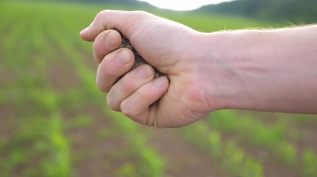 Close up of male farmers hand holds a handful of dry ground on the field at sunny day. Blurred meadow at background. Agriculture concept. Side view