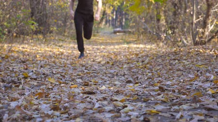 outonal : Young unrecognizable man runs down path in autumnal forest. Guy jogs stepping on colored fallen leaves. Athlete is training at wood. Exercising outdoors. Blurred background Slow motion