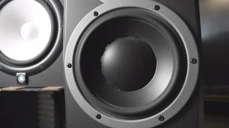 lüktet : White and black speaker pulsating and vibrating from sound on low frequency. Close up of moving sub-woofers on recording studio. Work of modern high fidelity loudspeaker membranes. Slow motion