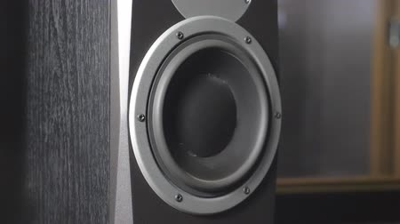 pulsate : Close up of moving sub-woofer on recording studio. Black round audio speaker pulsating and vibrating from sound on low frequency. Working of modern high fidelity loudspeaker membrane. Slow motion