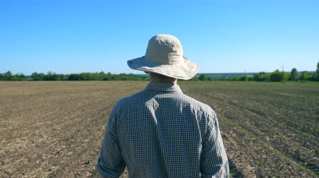 поясница : Follow to unrecognizable young male farmer in hat walking through the small green sprouts on his field at sunny summer day. Concept of agricultural business. Rear back view Close up